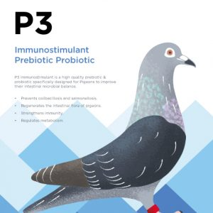P3 Prebiotic Probiotic Supplement