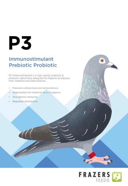 P3 Prebiotic Probiotic Supplement