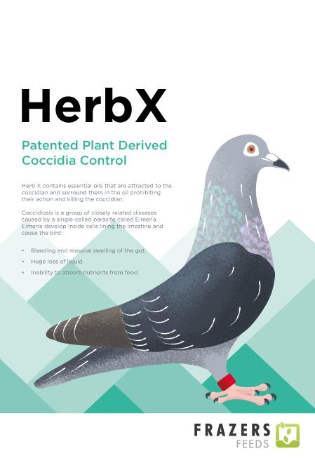 HerbX Coccidiosis Supplement - Cocci