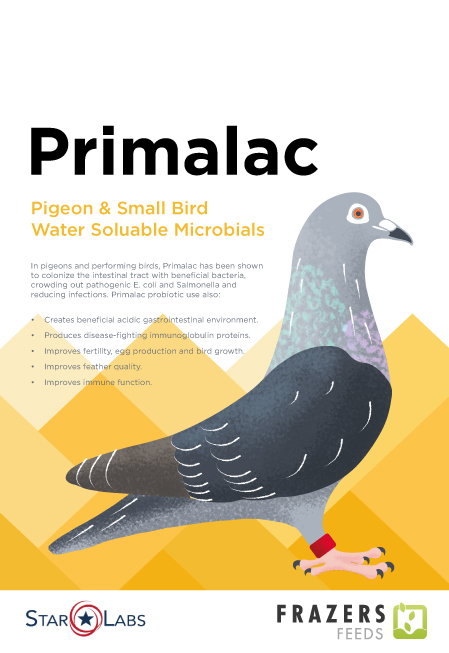 Primilac Pigeon and Small Bird Water Soluable Microbials