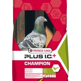 Champion IC