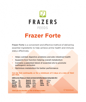 Frazer Forte Amino Electrolyte Vitamin