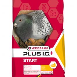 Start IC
