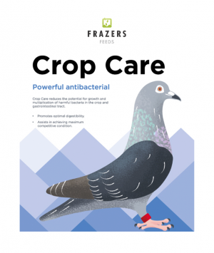Crop Care - Antibacterial Pigeon