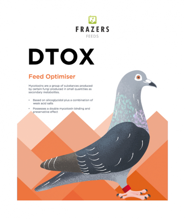 DTOX - Feed Improver Pigeon