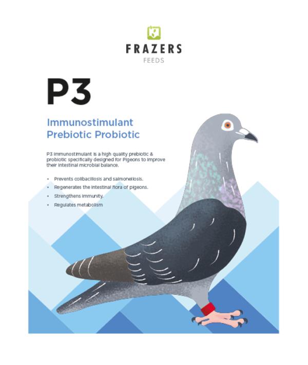 P3 Prebiotic Probiotic - Pigeon
