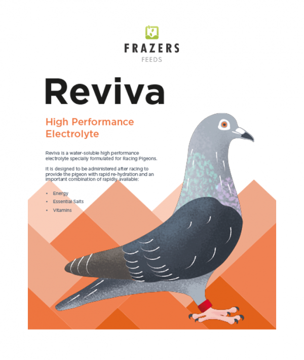 Reviva High Performance Electrolyte