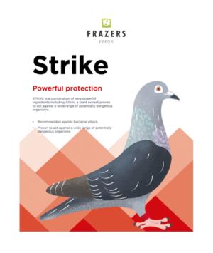 Strike - Garlic Antibacterial Prebiotic Pigeon