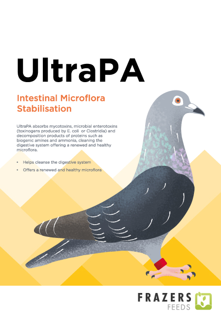 UltraPA - Toxin Binder Probiotic Pigeon Poultry 300g